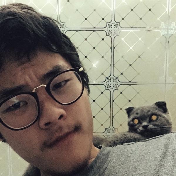 粘人的小猫